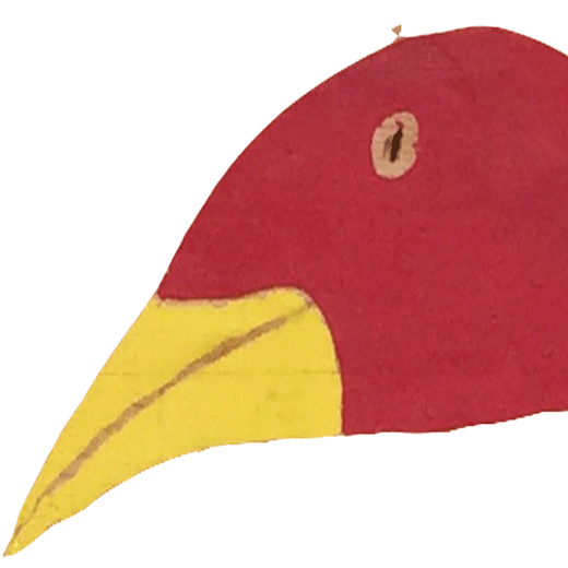 Moorvogel_Bird-square